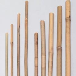 Bambusstäbe 105cm, 10er Pack